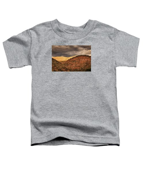 View From A Train Pnt Toddler T-Shirt