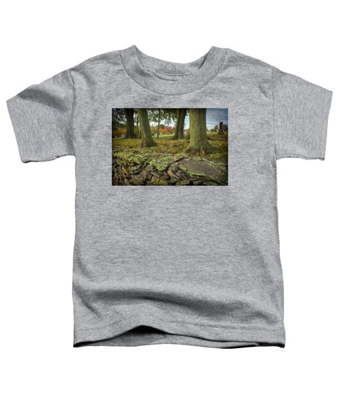 View Toward The Cemetery Toddler T-Shirt