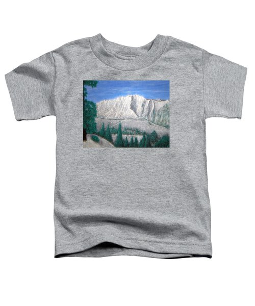 Viewfrom Spruces Toddler T-Shirt