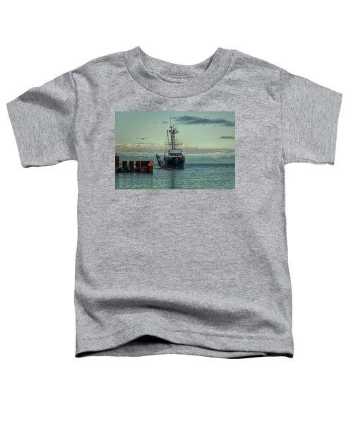 Viking Pride Toddler T-Shirt