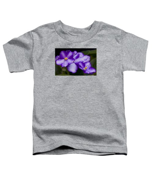 Violet Dreams Toddler T-Shirt