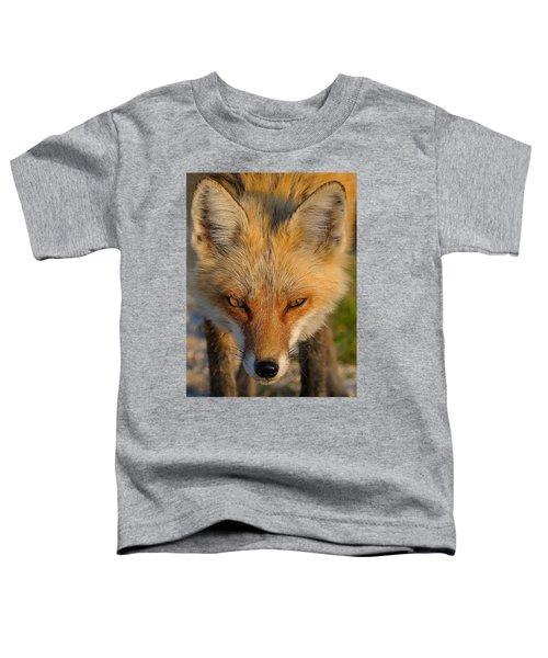 Vixen Toddler T-Shirt