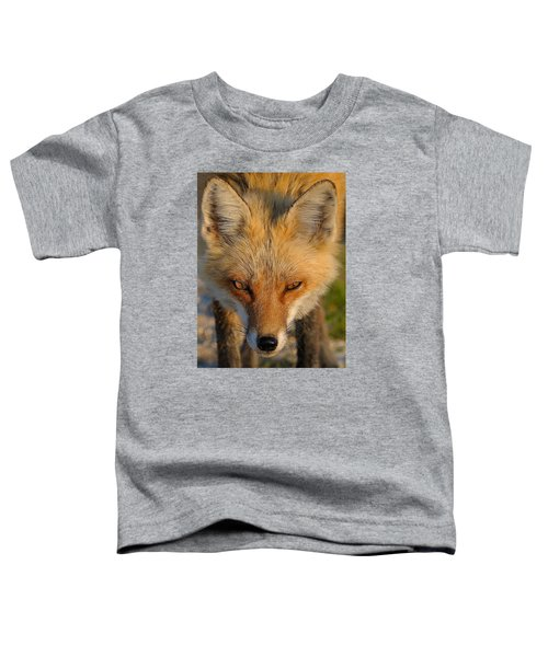 Vixen Toddler T-Shirt