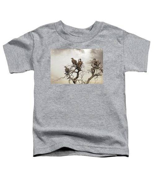 Vultures In A Dead Tree.  Toddler T-Shirt by Jane Rix