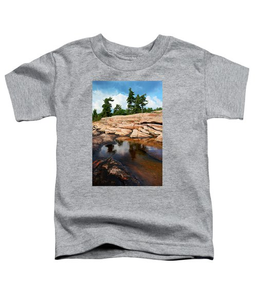 Wall Island Colours Toddler T-Shirt