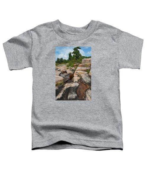 Wall Island Rock-3592 Toddler T-Shirt