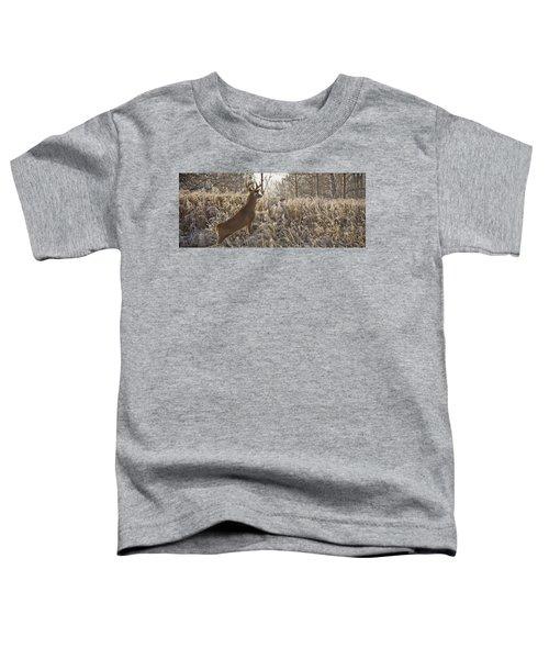 Wary Buck Toddler T-Shirt