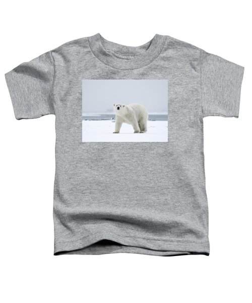 Watchful In The Arctic Toddler T-Shirt