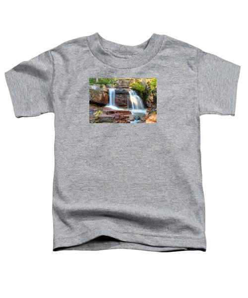 Waterfall Toddler T-Shirt by Gary Lengyel