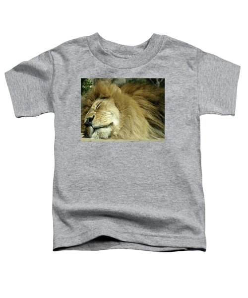 We All Like To Pass As Cats Toddler T-Shirt