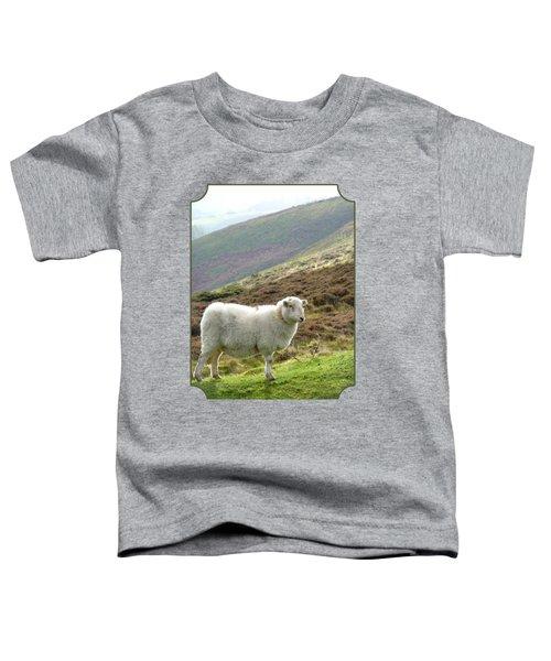 Welsh Mountain Sheep Toddler T-Shirt by Gill Billington