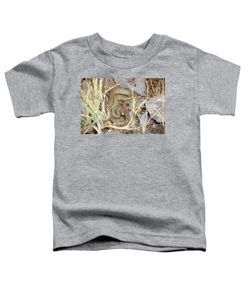 Western Yellow-bellied Racer, Coluber Constrictor Toddler T-Shirt