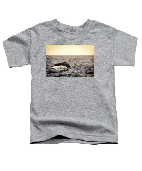 Whale Fluke Toddler T-Shirt