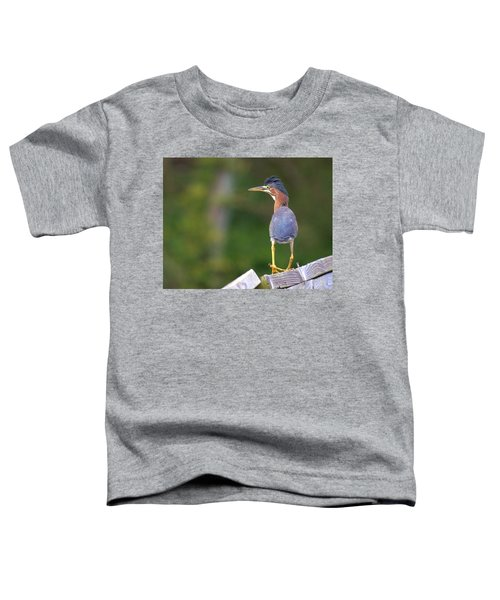 What You Looking At? Toddler T-Shirt