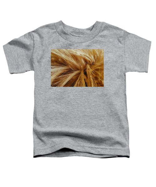Wheat In The Sunset Toddler T-Shirt
