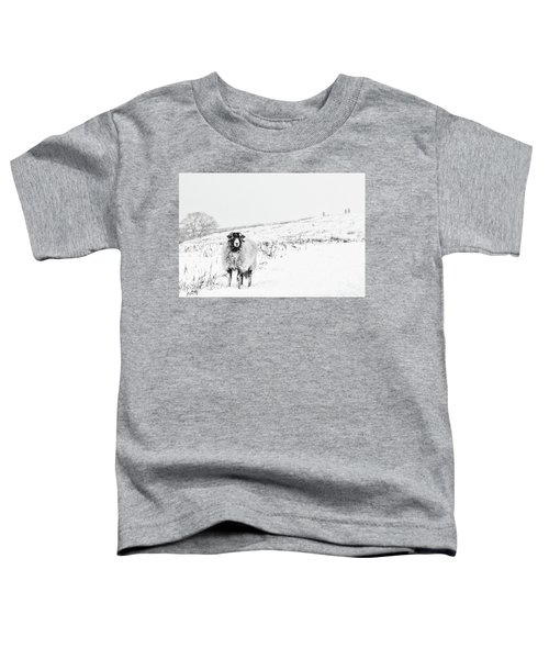 Which Way Is South? Toddler T-Shirt