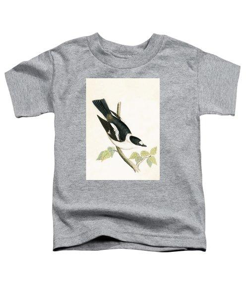 White Collared Flycatcher Toddler T-Shirt