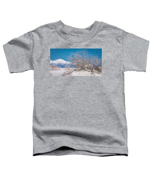 White Desert Toddler T-Shirt