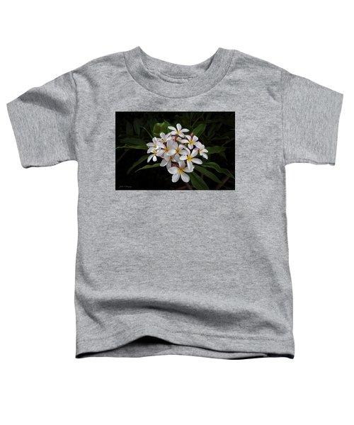 White Plumerias In Bloom Toddler T-Shirt