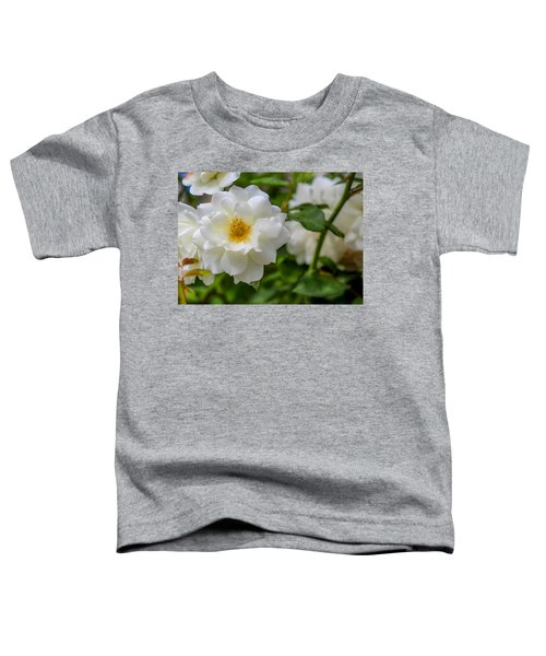 Toddler T-Shirt featuring the photograph White Rose by Alison Frank