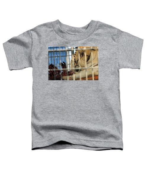 White Tiger Toddler T-Shirt
