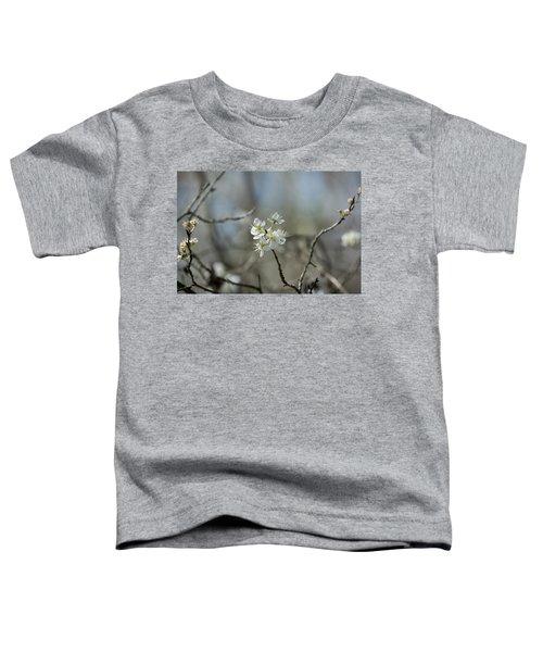 White Tree Bud Toddler T-Shirt