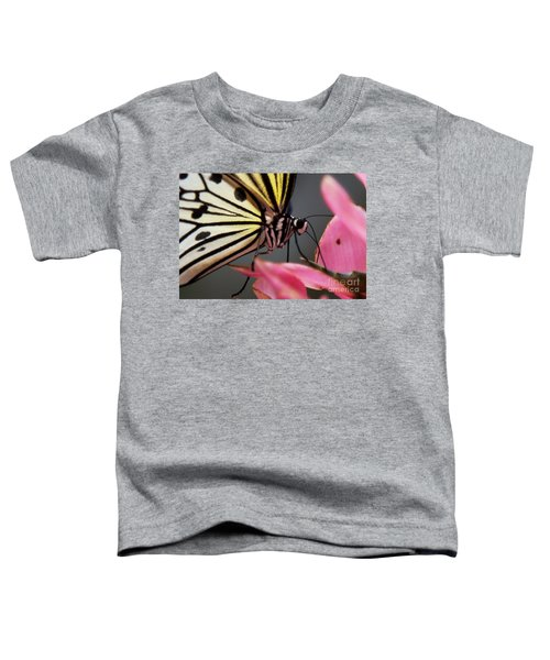 White Tree Nymph Butterfly Toddler T-Shirt