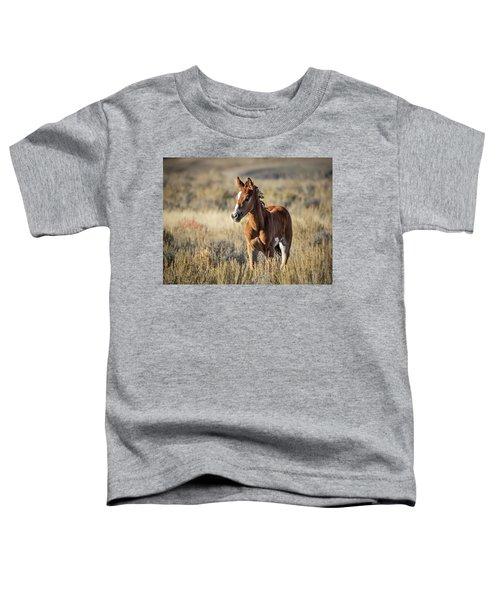 Wild Colt In Sand Wash Basin - Northwest Colorado Toddler T-Shirt