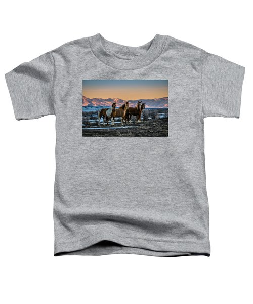 Wild Horse Group Toddler T-Shirt