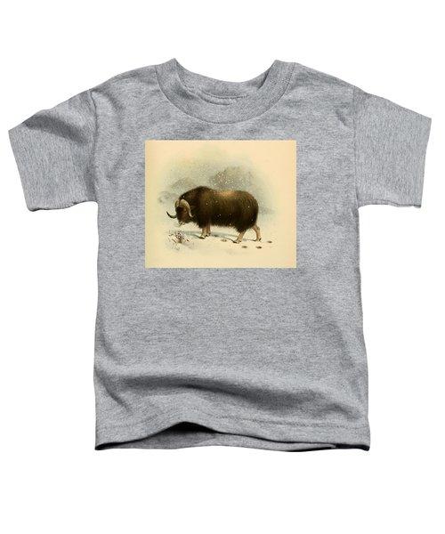 Wildoxensheepgo Toddler T-Shirt
