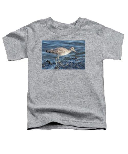 Willet In Winter Plumage Toddler T-Shirt