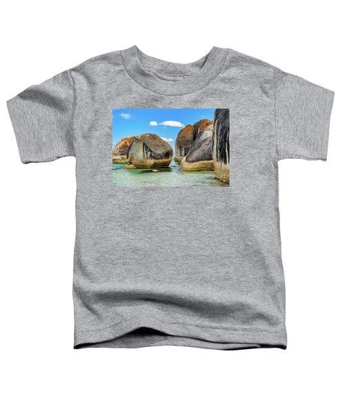 William Bay 2 Toddler T-Shirt
