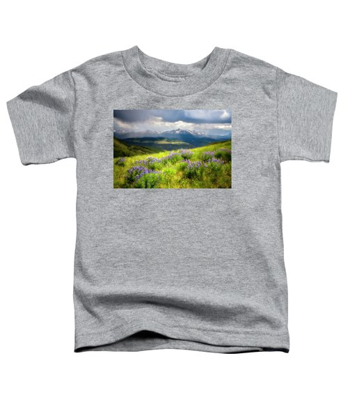 Toddler T-Shirt featuring the photograph Wilson Peak by Whit Richardson