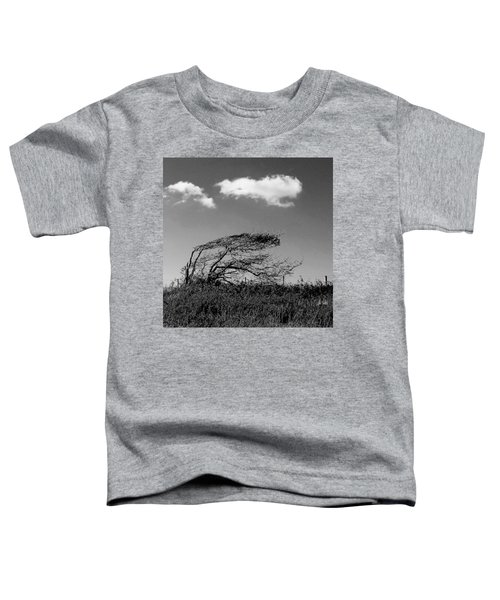 Windswept Toddler T-Shirt