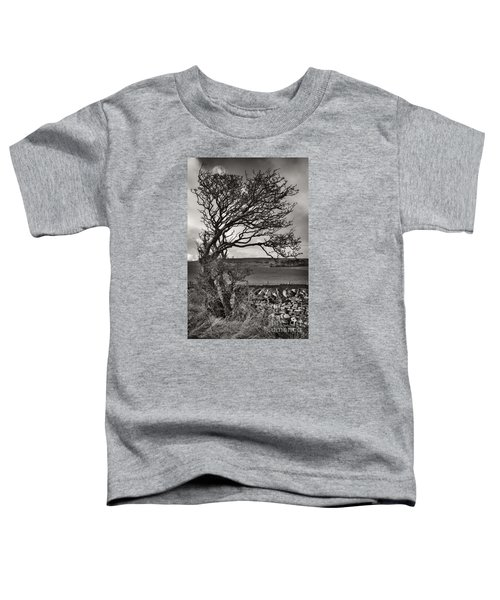 Windswept Tree In Winter Toddler T-Shirt