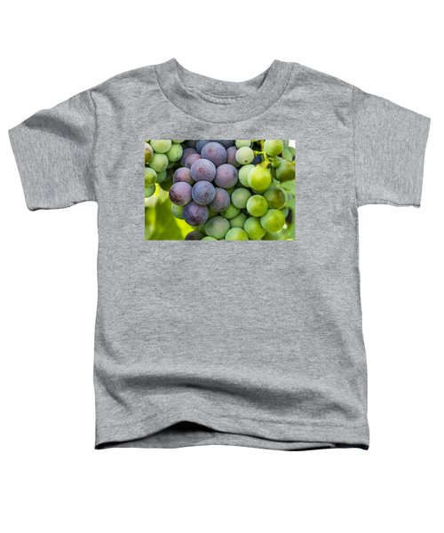 Wine Grapes Close Up Toddler T-Shirt