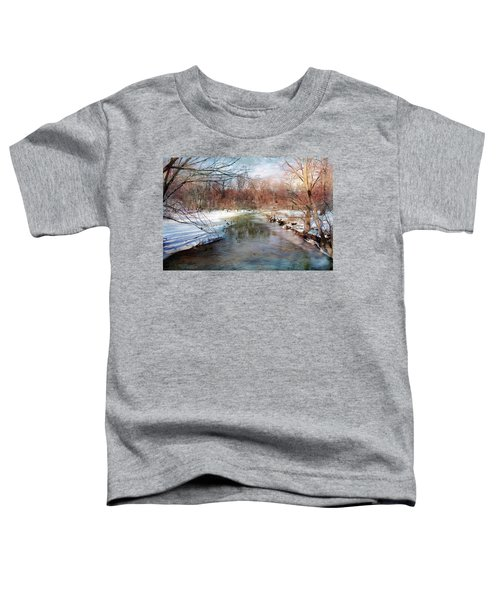 Winter At Cooper River Toddler T-Shirt