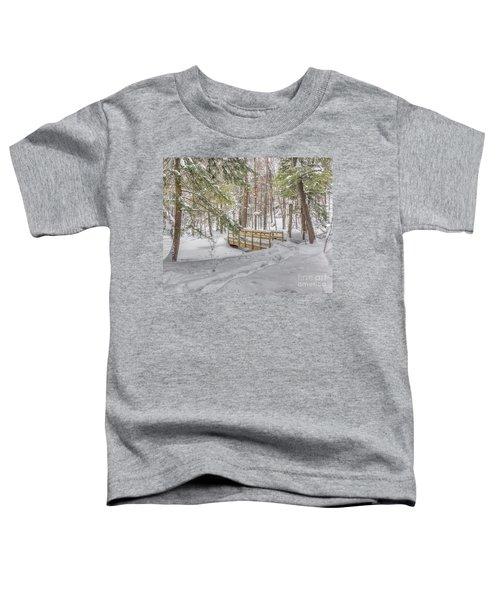 Winter Bridge Toddler T-Shirt