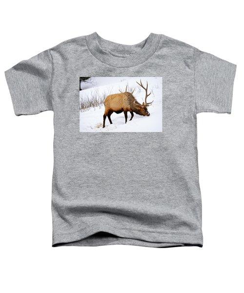 Winter Bull Toddler T-Shirt