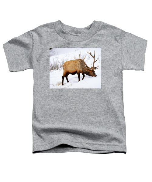 Toddler T-Shirt featuring the photograph Winter Bull by Greg Norrell