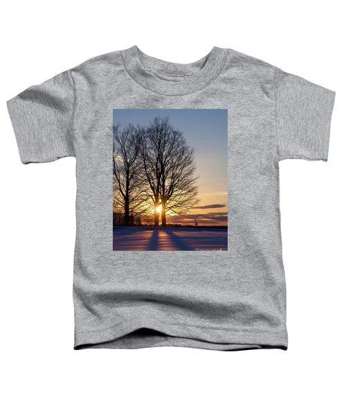 Winter, Crystal Spring Farm, Brunswick, Maine -78592 Toddler T-Shirt
