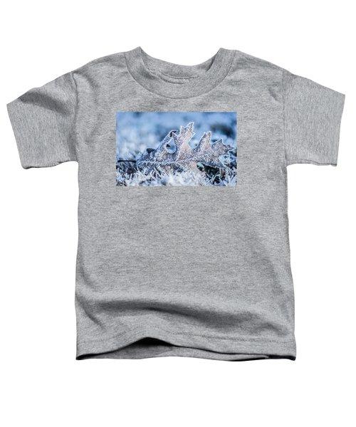 Winter Frost Toddler T-Shirt