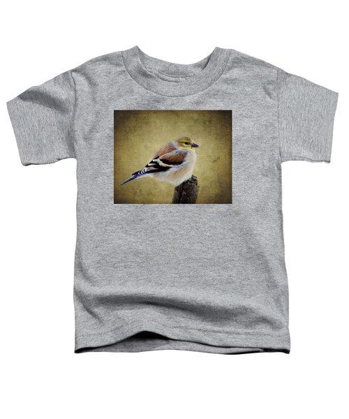 Winter Goldfinch Toddler T-Shirt