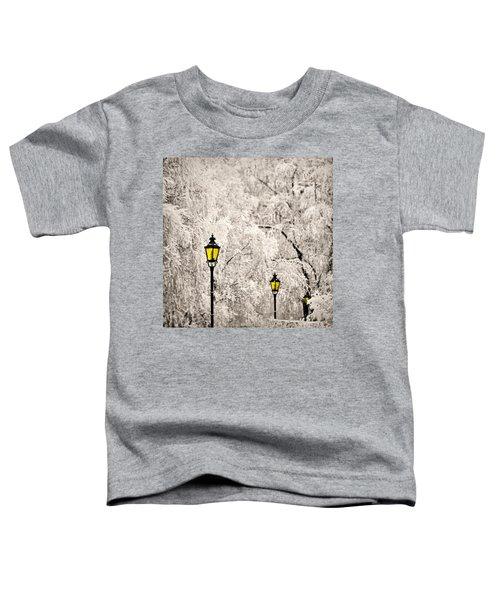 Winter Lanterns Toddler T-Shirt