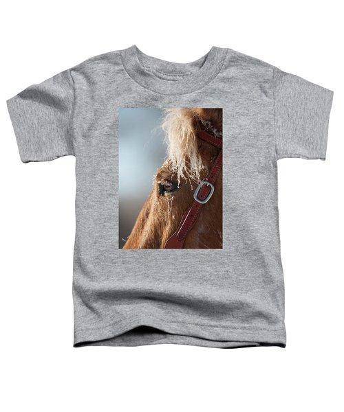 Winter Mustang Eye Toddler T-Shirt