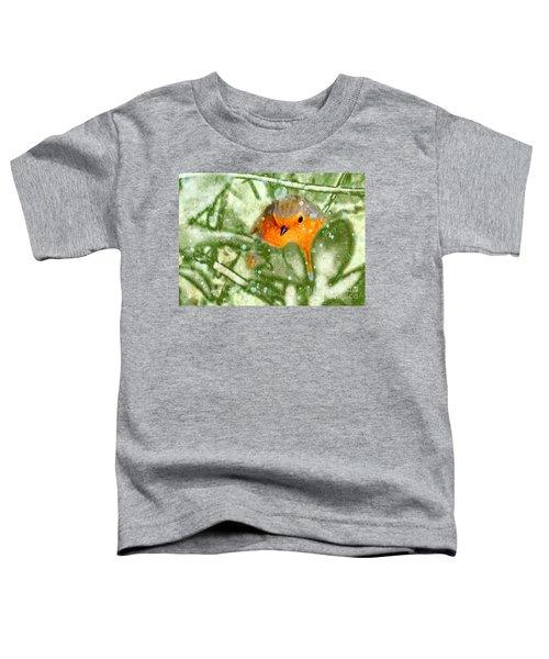 Winter Robin Toddler T-Shirt