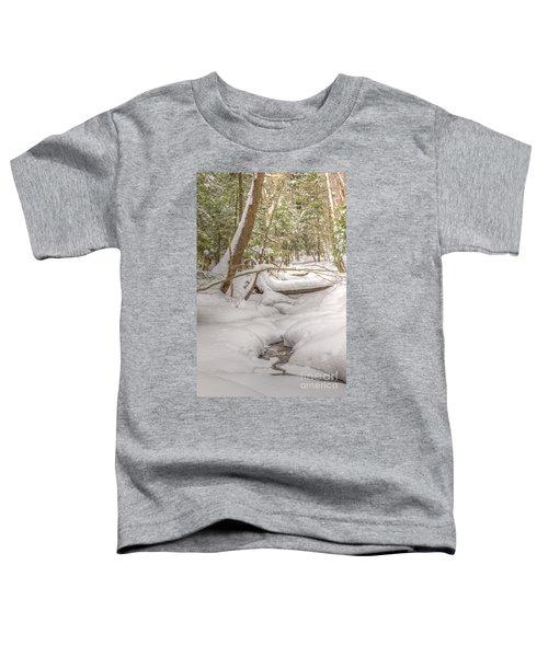 Winter Serenity Toddler T-Shirt