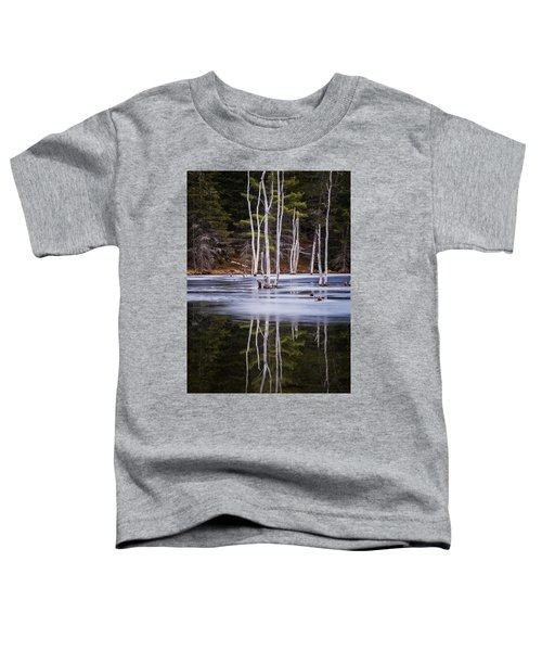 Winter Thaw Relections Toddler T-Shirt
