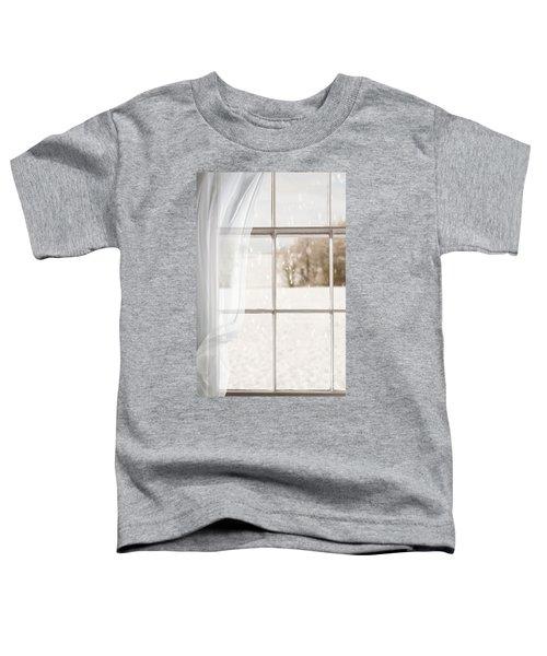 Winter Through A Window Toddler T-Shirt