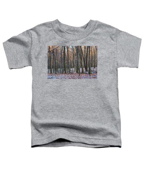Winter - Uw Arboretum Madison Wisconsin Toddler T-Shirt